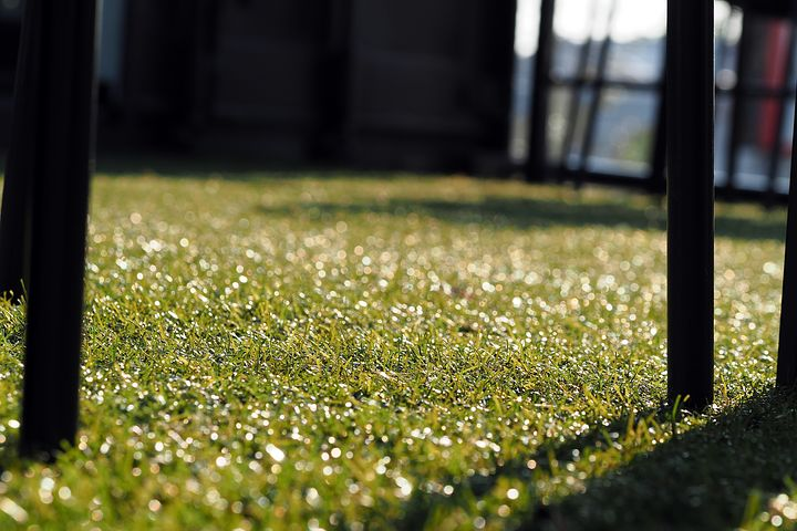 Synthetic turf from Sydney